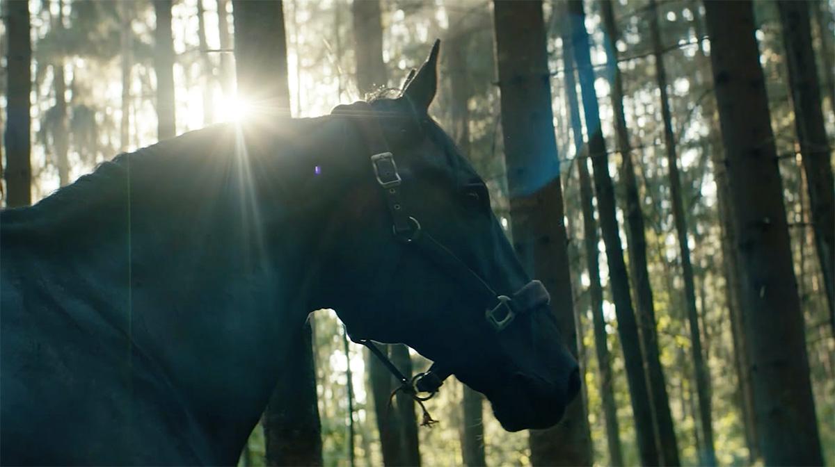 ut å stjæle hester anmeldelse